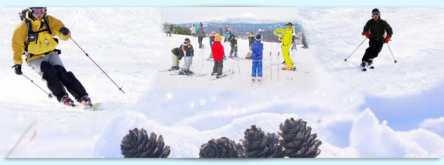ビギナーの方や、小さいお子様と一緒にファミリーでスキーを楽しめる!